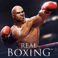Real Boxing Mod