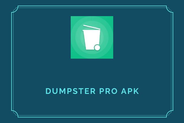 Dumpster Pro Apk 2020
